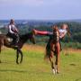 Конная база. Обучение верховой езде актеров и каскадеров. Предоставляем лошадей для трюковых съемок.