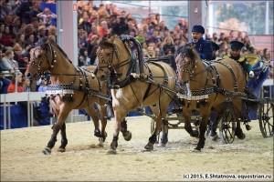ЭКВИРОС. Главное конное событие года.