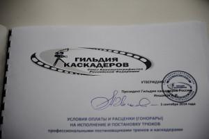 Новые расценки от Гильдии каскадеров России